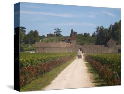 Chateau Grand Mayne and Vineyard, Saint Emilion Grand Cru Classe, Saint Emilion, Bordeaux, France