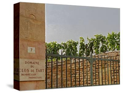 Clos De Tart Vineyard and Iron Gate in Morey Saint Denis, Bourgogne, France