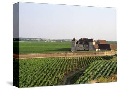 Clos De Vougeot, 16th Century Monastery and Vineyard, Les Petits Vougeots Vineyard
