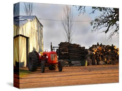 Farm with Old Red Tractor and Firewood, Montevideo, Uruguay