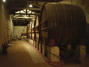 Fermentation Vats in Winery, Domaine Saint Martin De La Garrigue, Montagnac by Per Karlsson