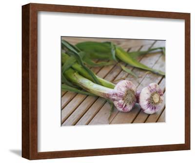 Fresh Garlic on Teak Table, Clos Des Iles, Le Brusc, Var, Cote d'Azur, France