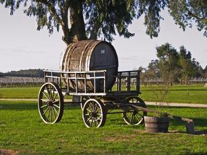 Horse Drawn Carriage Cart and Wooden Barrel, Bodega Juanico Familia Deicas Winery, Juanico by Per Karlsson