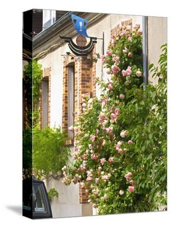 House with Rose Bushes and Wrought Iron Sign, Hautvillers, Vallee De La Marne, Champagne, France