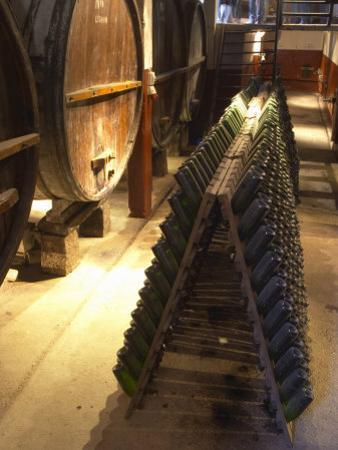 Oak Aging Vats and Pupitres for Fermenting Sparkling Wine, Bodega Pisano Winery, Progreso, Uruguay by Per Karlsson