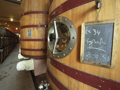 Oak Barrels and Foudre Fermentation Vats, Chateau Puech-Haut, Saint-Drezery by Per Karlsson
