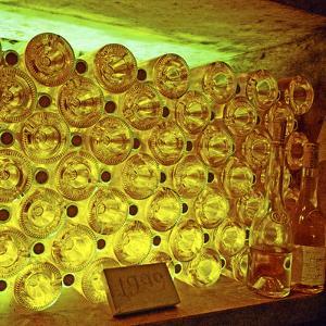 Oremus Winery in Tolcsva, Tokaj, Hungary by Per Karlsson