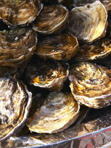 Plate of Oysters, France by Per Karlsson