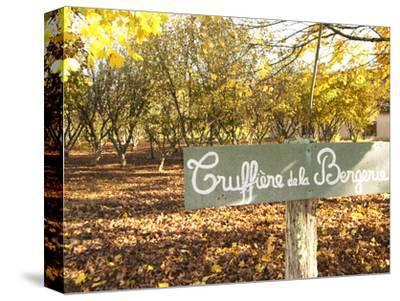 Sign at Entrance to Truffiere De La Bergerie (Truffiere) Truffles Farm, Ste Foy De Longas, Dordogne