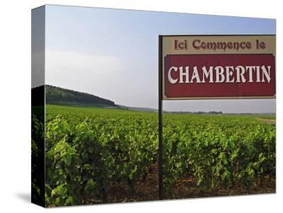 Sign Ici Commence Le Chambertin, Grand Cru Vineyard, Bourgogne, France