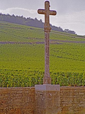 Stone Cross Marking the Grand Cru Vineyards, Romanee Conti and Richebourg, Vosne, Bourgogne, France
