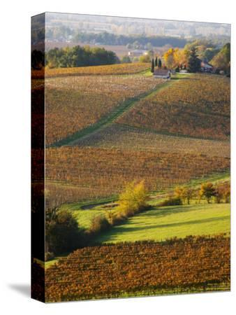 View Over the Vineyards in Bergerac, Chateau Belingard, Bergerac, Dordogne, France