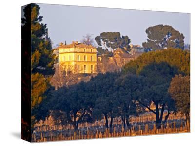 Vineyard and Building of Chateau La Nerthe, Chateauneuf-Du-Pape, Vaucluse, Rhone, Provence, France