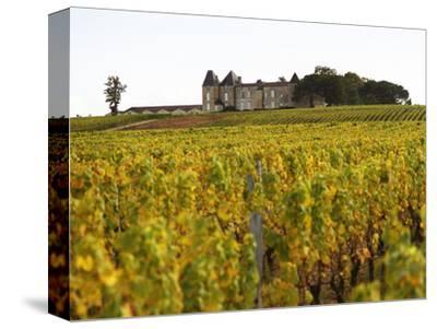 Vineyard and Medieval Chateau, Choteau d'Yquem, Sauternes, Bordeaux, Gironde, France