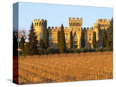 Vineyard with Syrah Vines and Chateau Des Fines Roches, Chateauneuf-Du-Pape, Vaucluse
