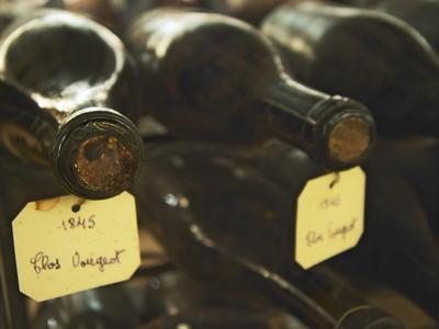 Wine Cellar and Bottles of Clos De Vougeot, France