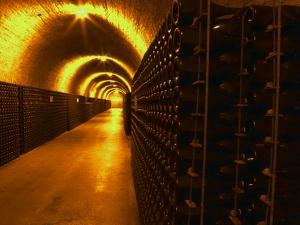 Wine Cellar, Old Chalk Quarry, Champagne Ruinart, Reims, Marne, Ardennes, France by Per Karlsson