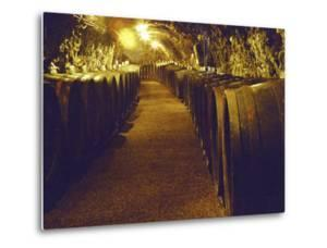 Wine Cellar with Tunnels of Wooden Barrels and Tokaj Wine, Royal Tokaji Wine Company, Mad, Hungary by Per Karlsson