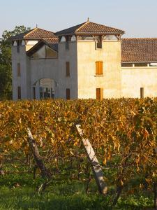Winery Building and Golden Vineyard in Late Afternoon, Domaine Des Verdots, Conne De Labarde by Per Karlsson