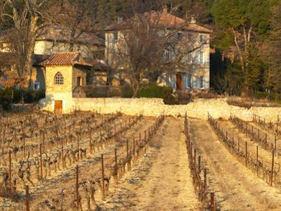 Winery Building at Chateau Saint Cosme, Gigondas, Vaucluse, Rhone, Provence, France by Per Karlsson