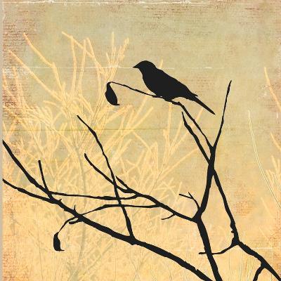 Perched-Andrew Michaels-Art Print