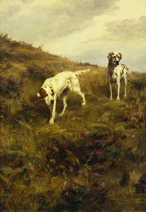Two Setters Pointing at Quail by Percival L^ Rosseau