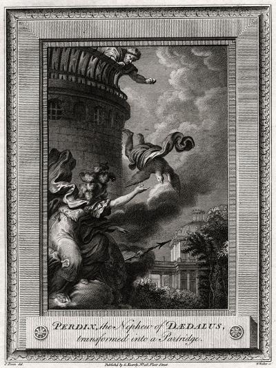 Perdix, the Nephew of Daedalus, Transformed into a Partridge, 1774-W Walker-Giclee Print