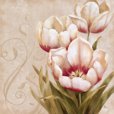 https://imgc.artprintimages.com/img/print/perfect-blooms-ii_u-l-f4ehwa0.jpg?p=0