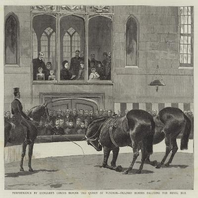 Performance by Hengler's Circus before the Queen at Windsor, Trained Horses Saluting the Royal Box--Giclee Print