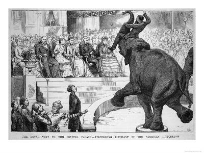 Performing Elephant Entertains the Crowd During a Circus Performance at the Crystal Palace--Giclee Print
