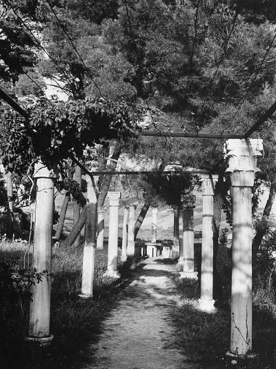 Pergola Held Up by Columns in Salin, Croatia-Dusan Stanimirovitch-Photographic Print