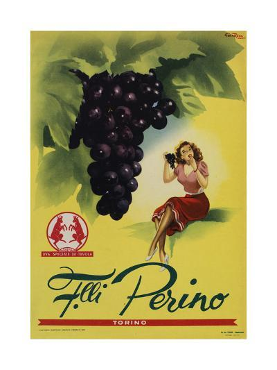 Perino - Grapes-Marcus Jules-Giclee Print