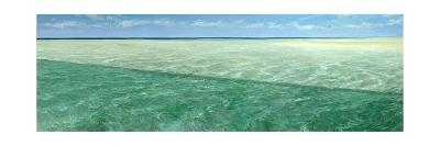 Permit Bank: Permit Fish, Trachinotus Falcatus, Forage for Food-Stanley Meltzoff-Giclee Print