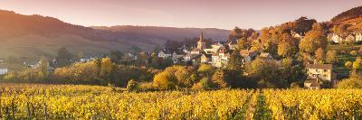 Pernand-Vergelesses and its Vineyards, Cote D'Or, Burgundy, France-Matteo Colombo-Photographic Print