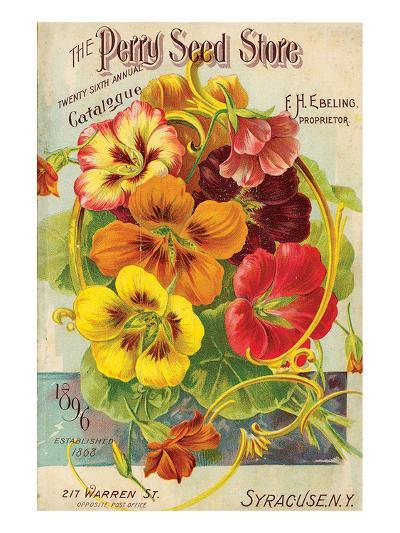 Perry Seed Store Syracuse NY--Art Print