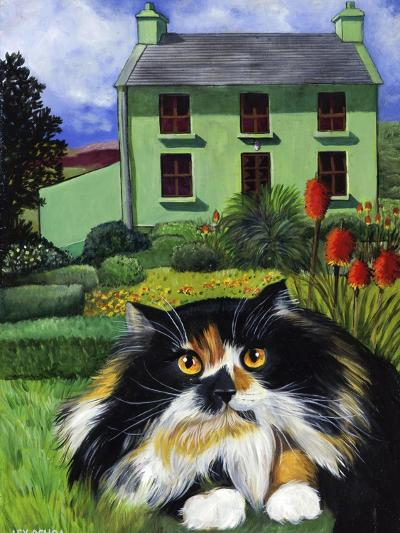 Persian Cat in Ireland (Chat Persan En Irland)-Isy Ochoa-Giclee Print