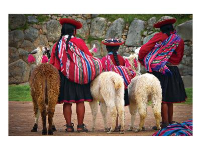 Peruvian Indios with Lamas--Art Print