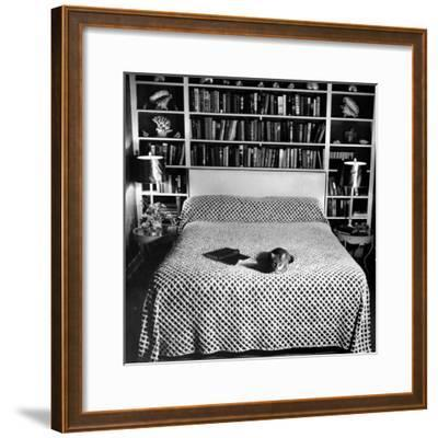 Pet Cat Sitting on Bed of Author Dorothy Parker