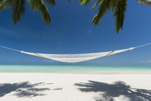 Hammock under Palms on a Tropical Beach by Pete Atkinson
