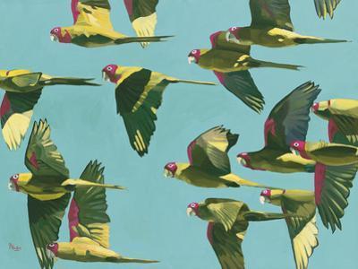 Parrots in Flight - Retro by Pete Hawkins