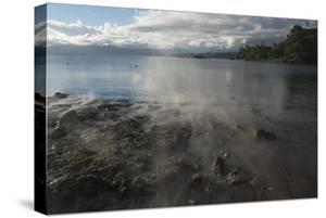 Scenic of Savusavu Bay Hot Springs, Vanua Levu, Fiji by Pete Oxford