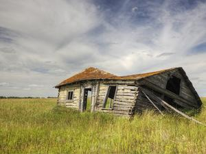 A Log Cabin Collapses into the Prairie Landscape by Pete Ryan