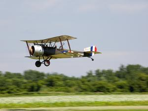 A Sopwith 1-1/2 Strutter Flies Low over a Grass Runway by Pete Ryan