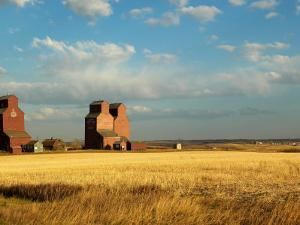 Grain Elevators Stand in a Prairie Ghost Town, Rowley, Alberta, Canada by Pete Ryan