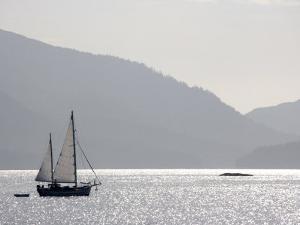 Sailing in Juan Perez Sound, Juan Perez Sound, Gwaii Haanas National Park, British Columbia, Canada by Pete Ryan