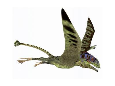 https://imgc.artprintimages.com/img/print/peteinosaurus-pterosaur-from-the-triassic-period_u-l-pu23620.jpg?p=0