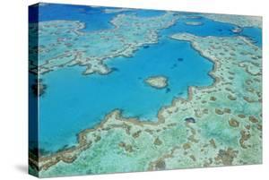 Aerial View of Heart Reef, Great Barrier Reef, Queensland, Australia by Peter Adams