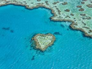 Aerial View of Heart Reef, Part of Great Barrier Reef, Queensland, Australia by Peter Adams