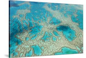 Aerial View of the Great Barrier Reef, Queensland, Australia by Peter Adams