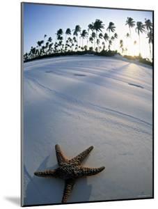 Beach at Zanzibar, Tanzania by Peter Adams